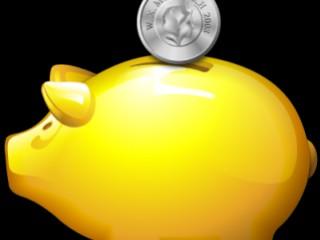 Quelles aides financières pour l'assainissement non collectif ?